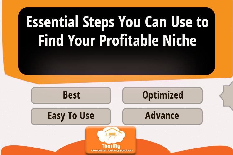Essential Steps You Can Use to Find Your Profitable Niche