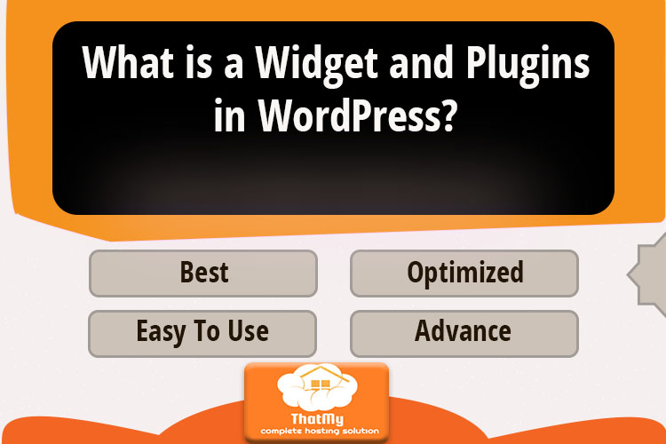 What is a Widget and Plugins in WordPress?